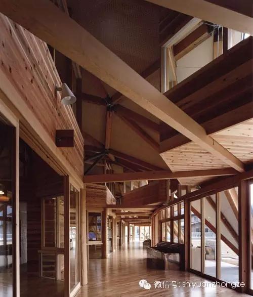 全木结构设计 日本泡泡幼儿园 - 预制建筑网:装配式