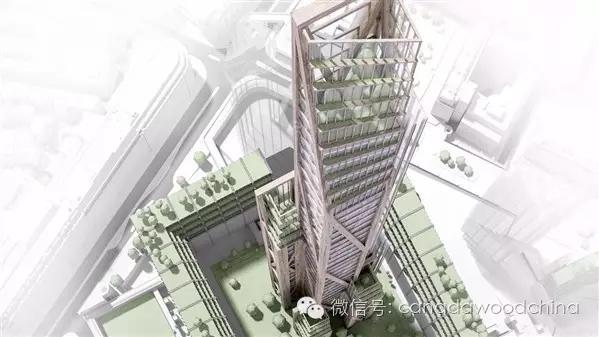 英国伦敦市中心规划中的80层木质摩天大楼。 道格拉斯冷杉(花旗松)堪称自然界的工程奇迹。只有几毫米长的死细胞组成了高达100米的树干。在狂风暴雨面前,它依旧可以岿然而立,并足以支撑自己160吨的庞大身躯。 而要论比强度,冷杉木制成的木梁是钢筋的3.5倍。如果有足够的时间,一棵树可以吸收达自重一半的质量的碳,并化为己用。另外,冷杉木材则可以被雕刻成几乎任何形状。 就在距离加拿大冷杉林不远的地方,一栋特殊的建筑悄然耸立。这是目前世界上最高的木制建筑,坐落于距离温哥华市中心几公里远的英属哥伦比亚大学校园内。