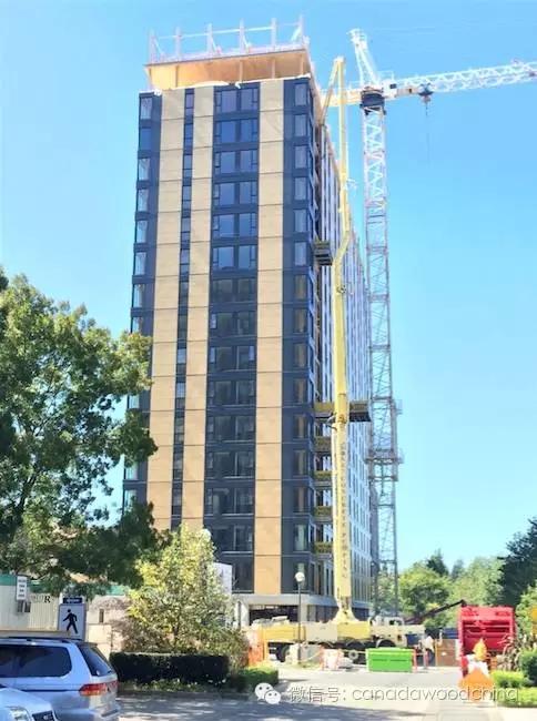 世界最高18层全木结构公寓楼封顶仪式
