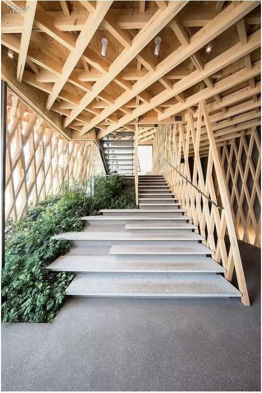 家中的屋顶把木架结构裸露