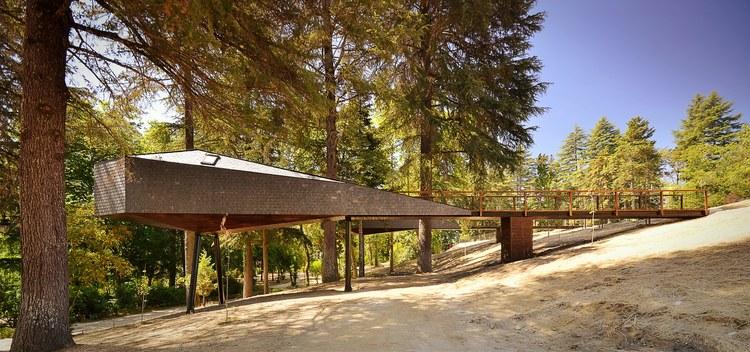 森林蛇形树屋