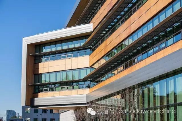 木结构建筑和引人瞩目的高科技正交胶合木(clt)所