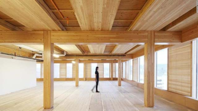 山东将建国内最高现代木结构建筑
