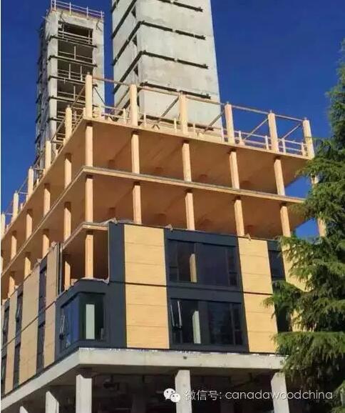 18层全球最高木结构施工进展报告 - 预制建筑网:装配