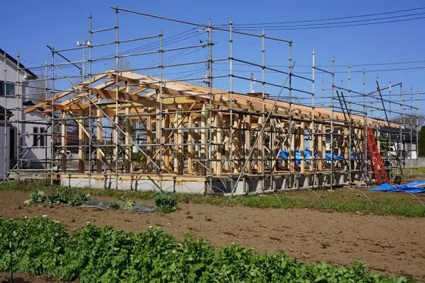 一幢单层木结构独立住宅,承重框架搭建完成的施工现场的外观